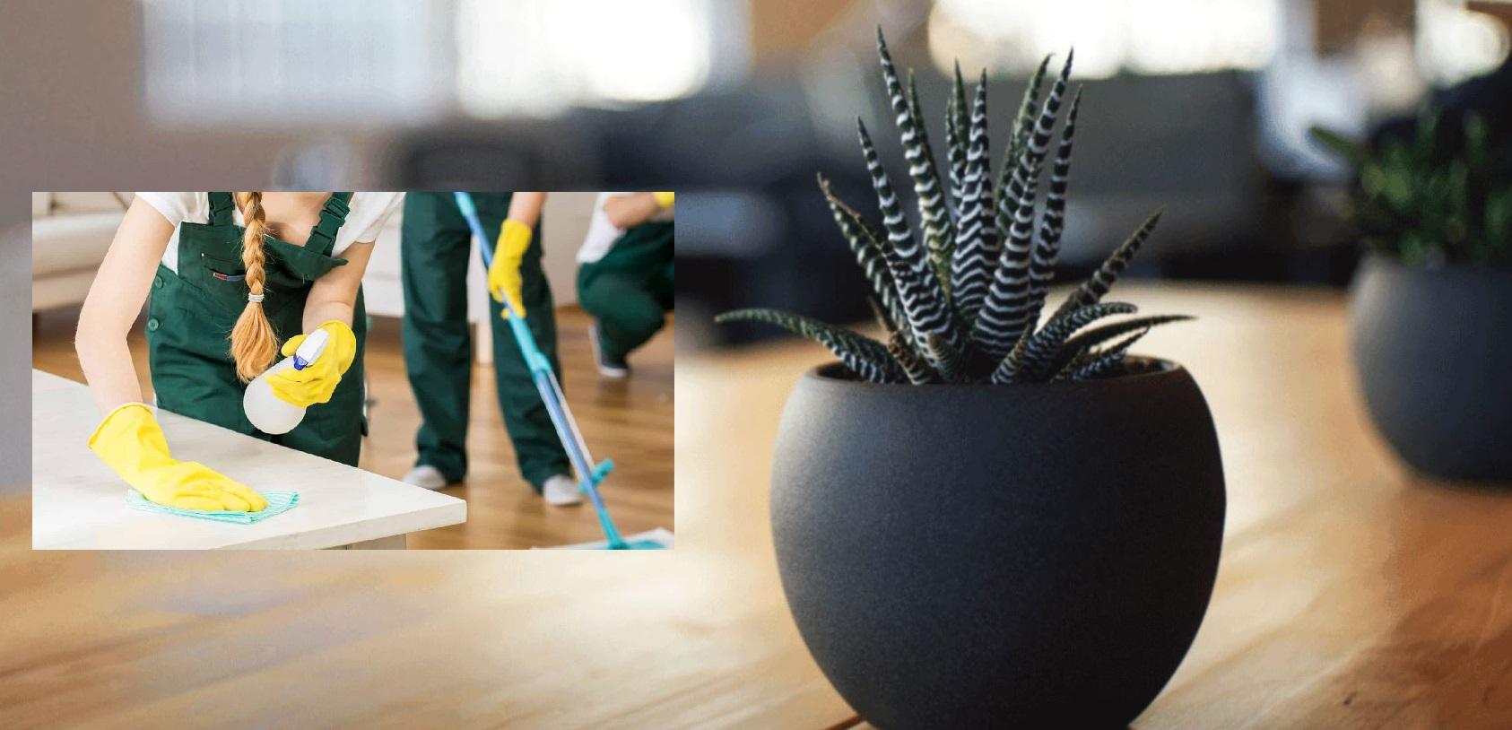 unterhaltsreinigung bremen f r gewerbe privat. Black Bedroom Furniture Sets. Home Design Ideas